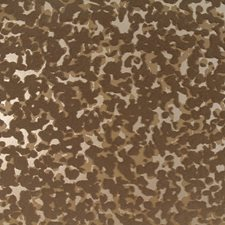 Brown Traditional Wallcovering by JF Wallpapers
