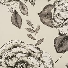 Black/Creme/Beige Transitional Wallcovering by JF Wallpapers