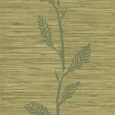 Olive Leaf Wallcovering by Brewster