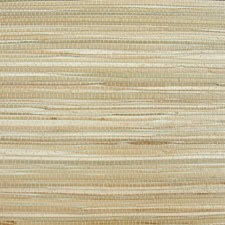 Brown/Creme/Beige Contemporary Wallcovering by JF Wallpapers