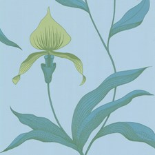 Turq/Grn Sidewall Wallcovering by Cole & Son Wallpaper