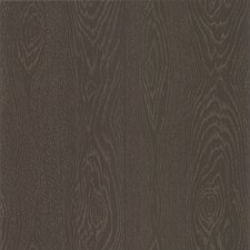 Ash Brown Wallcovering by Cole & Son Wallpaper