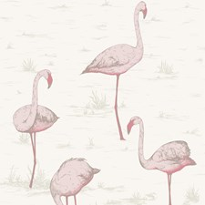 Pink/White Wallcovering by Cole & Son Wallpaper