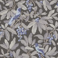 Midnight/Blu Botanical Wallcovering by Cole & Son Wallpaper