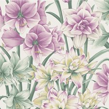 Green/Purple Wallcovering by Cole & Son Wallpaper