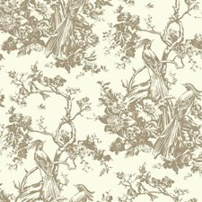 Brown/White Animals Wallcovering by York