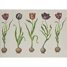 White/Purple/Green Botanical Wallcovering by Andrew Martin Wallpaper