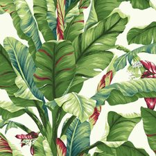 White/Grey Green/Light Yellow Tropical Wallcovering by York