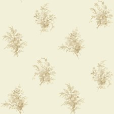 Off White/Cream/Beige Floral Wallcovering by York