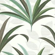 CA1553 El Morocco Palm by York