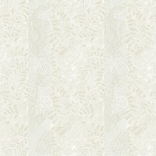 Sabal Wallcovering by Innovations