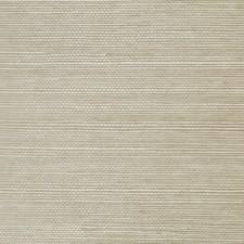 6863-34 Sisal Pale Grey NC12 by Clarence House