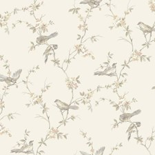 Pale Silver/White/Pale Peach Trellis Wallcovering by York