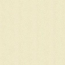 Soft Pearly Gold/Cream Bohemian Wallcovering by York
