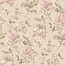 Soft Gold/Peach/Purple Floral Wallcovering by York