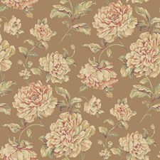 Bronze/Apricot/Amber Floral Medium Wallcovering by York