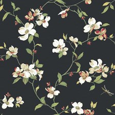 Blacks Flowers Wallcovering by York