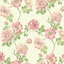 White/Light and Medium Pink/Coral Floral Wallcovering by York