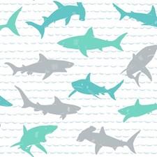 KI0567 Shark Charades by York