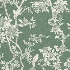 Sage Wallcovering by Ralph Lauren Wallpaper
