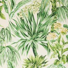 Palm Botanical Wallcovering by Lee Jofa Wallpaper