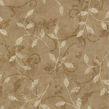 Brown Trail Wallcovering by Brewster