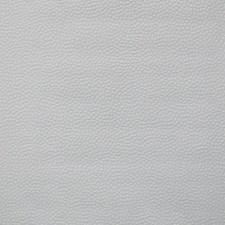 PT9021 Confetti by York