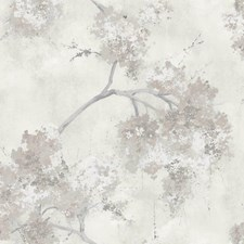 RMK11462RL Weeping Cherry Tree by York