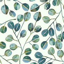 RMK11628WP Cat Coquillette Eucalyptus by York