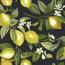 RMK11658WP Lemon Zest by York