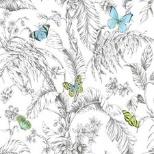 RMK11823WP Butterfly Sketch by York
