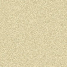 Yellow/Beige/Pinkish Gold Scroll Wallcovering by York