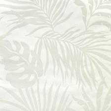 SO2491 Paradise Palm by York