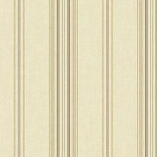 Golden Beige/Mossy Green/Dark Chocolate Stripes Wallcovering by York