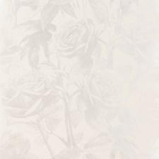 Zinc Wp Floral Medium Wallcovering by Clarke & Clarke