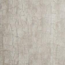 Parchment Wallcovering by Clarke & Clarke