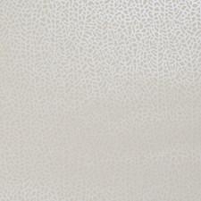 Ivory/Pearl Wallcovering by Clarke & Clarke