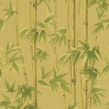 Yellow/Green/Light Green Wallcovering by Kravet Wallpaper