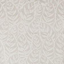 White/Grey Botanical Wallcovering by Kravet Wallpaper