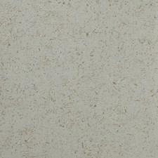 Beige/Neutral/Mineral Texture Wallcovering by Kravet Wallpaper