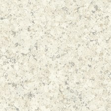 Beige/Grey Modern Wallcovering by Kravet Wallpaper