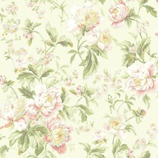 Cream/Pale Pink/Peachy Pink Floral Wallcovering by York