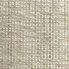 Solid Wallcovering by Winfield Thybony