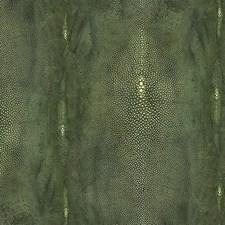 Vert Wallcovering by Scalamandre Wallpaper