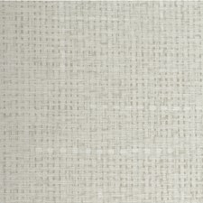 Briar Solid Wallcovering by Winfield Thybony