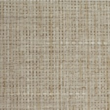 Willow Solid Wallcovering by Winfield Thybony