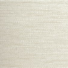 Luna Solid Wallcovering by Winfield Thybony