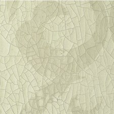 Spring Solid Wallcovering by Winfield Thybony