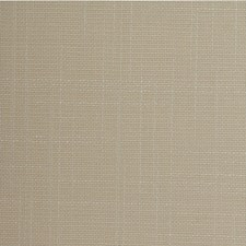 Biscotti Solid Wallcovering by Winfield Thybony