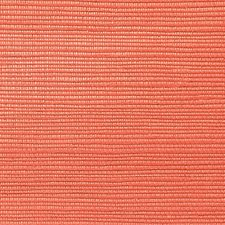 Sorbet Wallcovering by Scalamandre Wallpaper